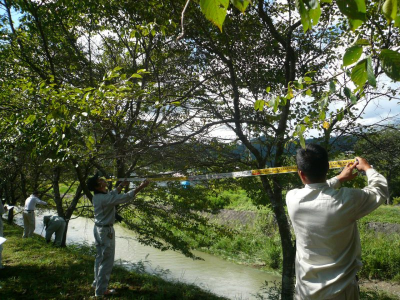 調査2 樹冠の大きさの測定